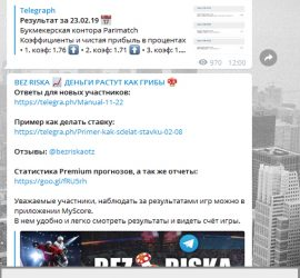 Bezriska телеграмм канал