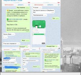 heyvan moneyteam телеграмм отзывы