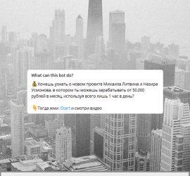 Литвин телеграмм канал