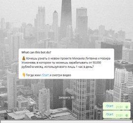 Литвин telegram канал