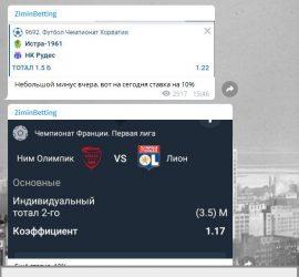 Виталий Зимин телеграмм обзор