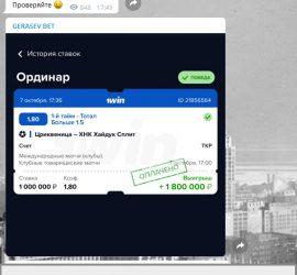 Герасев Бет телеграмм отзывы