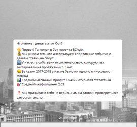 Bchub телеграмм канал
