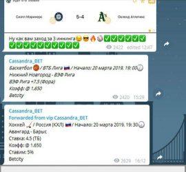 Cassandra_BET телеграмм канал